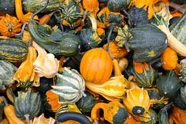 pumpkins-228474__180